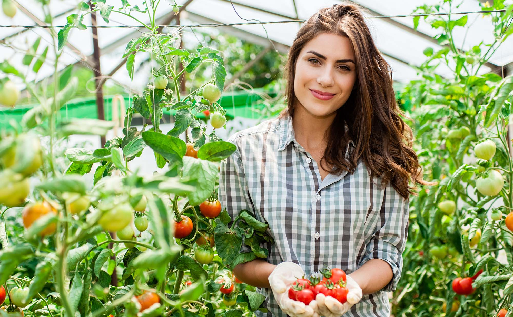 Agriculture Agribusiness course